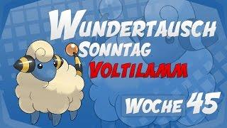 Wundertausch Sonntag - Woche 45 (Voltilamm) - Pokémon Omega Rubin und Alpha Saphir (ΩR/αS)