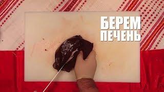Видеорецепт: как приготовить телячью печень со шпинатом? (0+)