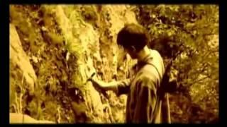 видео История развития марки Wrangler