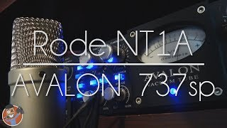 Rode NT1A Mic test with Avalon Vt 737 sp