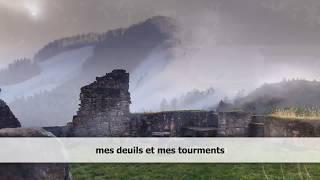 Damien Saez - Château de brume - Paroles/lyrics