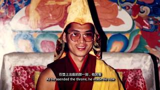 A real-life Bodhisattva - His Eminence the 25th Tsem Rinpoche