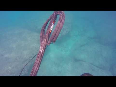 OAHU, HAWAII - Spearfishing Yokohama Bay - Apr 2016