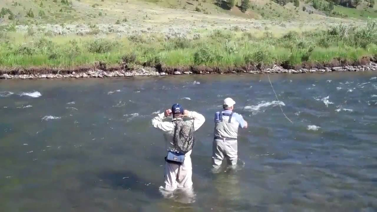 Fly fishing on the gallatin river big sky mt aug 4 2010 for Gallatin fishing report
