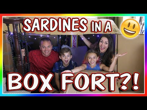 SARDINES IN A BOX FORT MAZE  HIDE AND SEEK  We Are The Davises