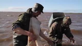 ловля рыбы в заполярье