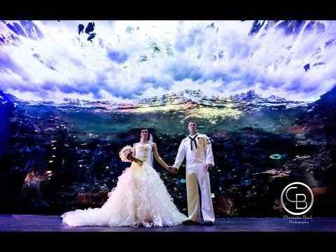 Georgia Aquarium Wedding Video by Christopher Brock Photography