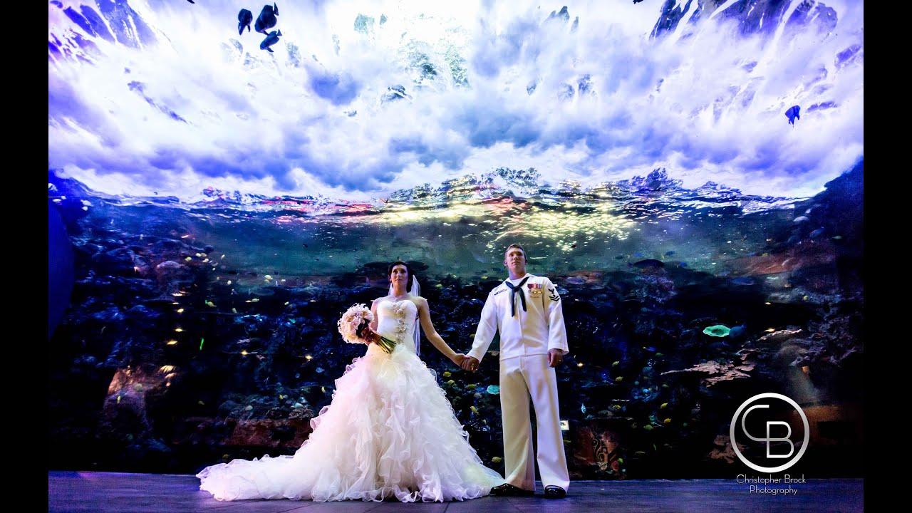 Georgia Aquarium Wedding Video by Christopher Brock
