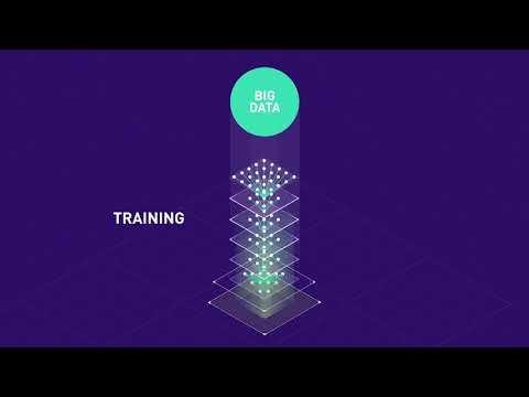 NVIDIA Tesla T4 Introduction to Inference