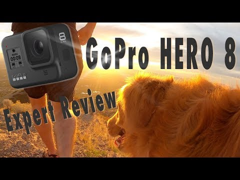 GoPro Hero 8 Expert Review - Hypersmooth 2.0 and dogs!