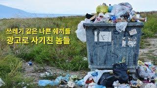 네이버 검색광고, 키워드광고 쓰레기 업체 실제 사레, …
