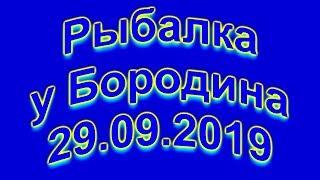 Рыбалка у Бородина 29 09 2019