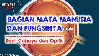 Erlamycetin Plus tetes mata merupakan obat golongan antibiotik untuk membantu mengobati peradangan a.