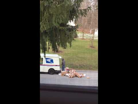 Mailman goes postal on packages