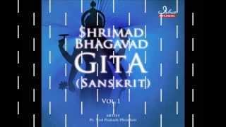 Bhagavad Gita - Chapter 01 (Complete Sanskrit recitation)