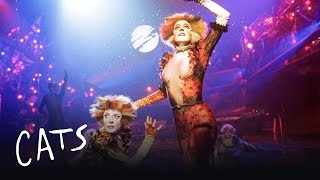 Macavity the Mystery Cat Part 2 | Cats the Musical