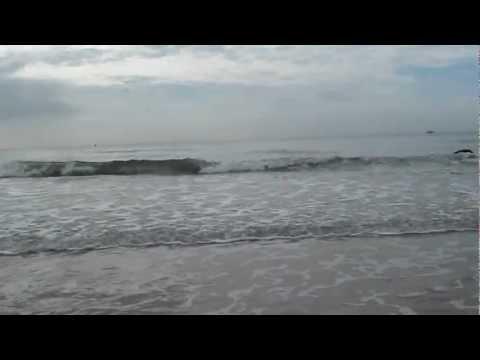 Sóng biển và tôi