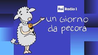 """Christian Solinas a """"Un giorno da pecora"""" (dal 36')"""