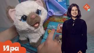 Интерактивный котенок Ками в магазине игрушек Toy.ru