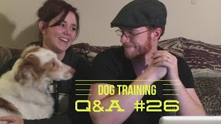 Dog Training Question and Answer #26