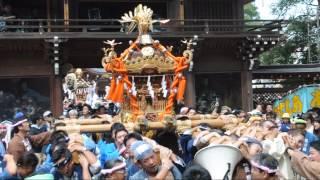 平成26年 立川市・諏訪神社例大祭【壮絶】大神輿宮出