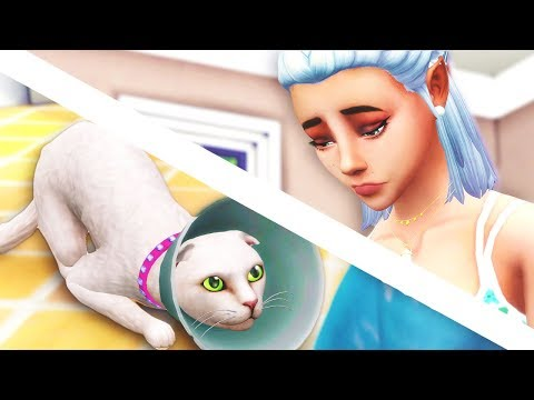 SHE'S GONE... // The Sims 4: Cats & Dogs #4