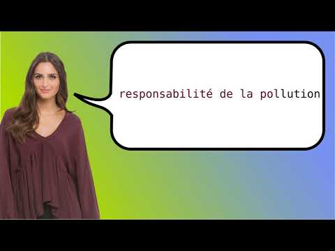 How to say 'pollution liability' in French?