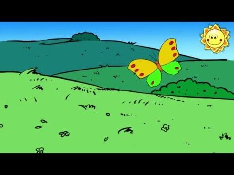 Schmetterling nun flieg geschwind - Kinderlieder - Kanal