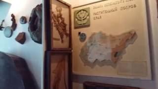 видео Краеведческие музеи: где узнать историю региона