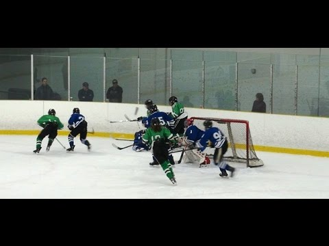 2017 Bauer Spring Shootout Pro Hockey Newport Game 3 Vs Ottawa Stars