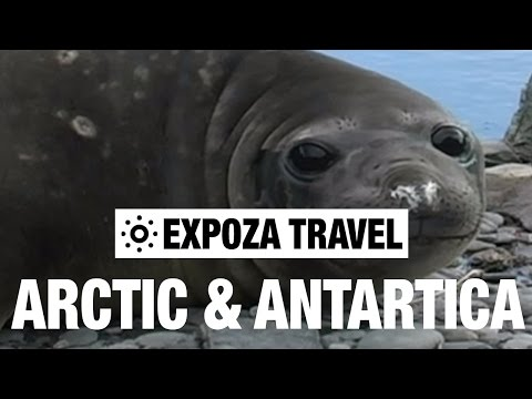Arctic & Antartica Vacation Travel Video Guide