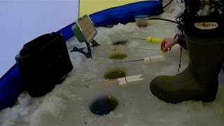 Зимняя рыбалка январь 2019 года.