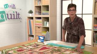 Leanne Anderson - A Tip for Removing Fusible From Your Iron