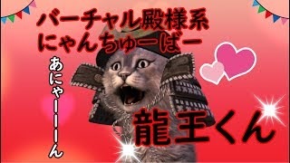 猫の龍王くんの動画「バーチャル殿様系にゃんちゅーばー猫の龍王くん始動!自己紹介するぞ!」のサムネイル画像