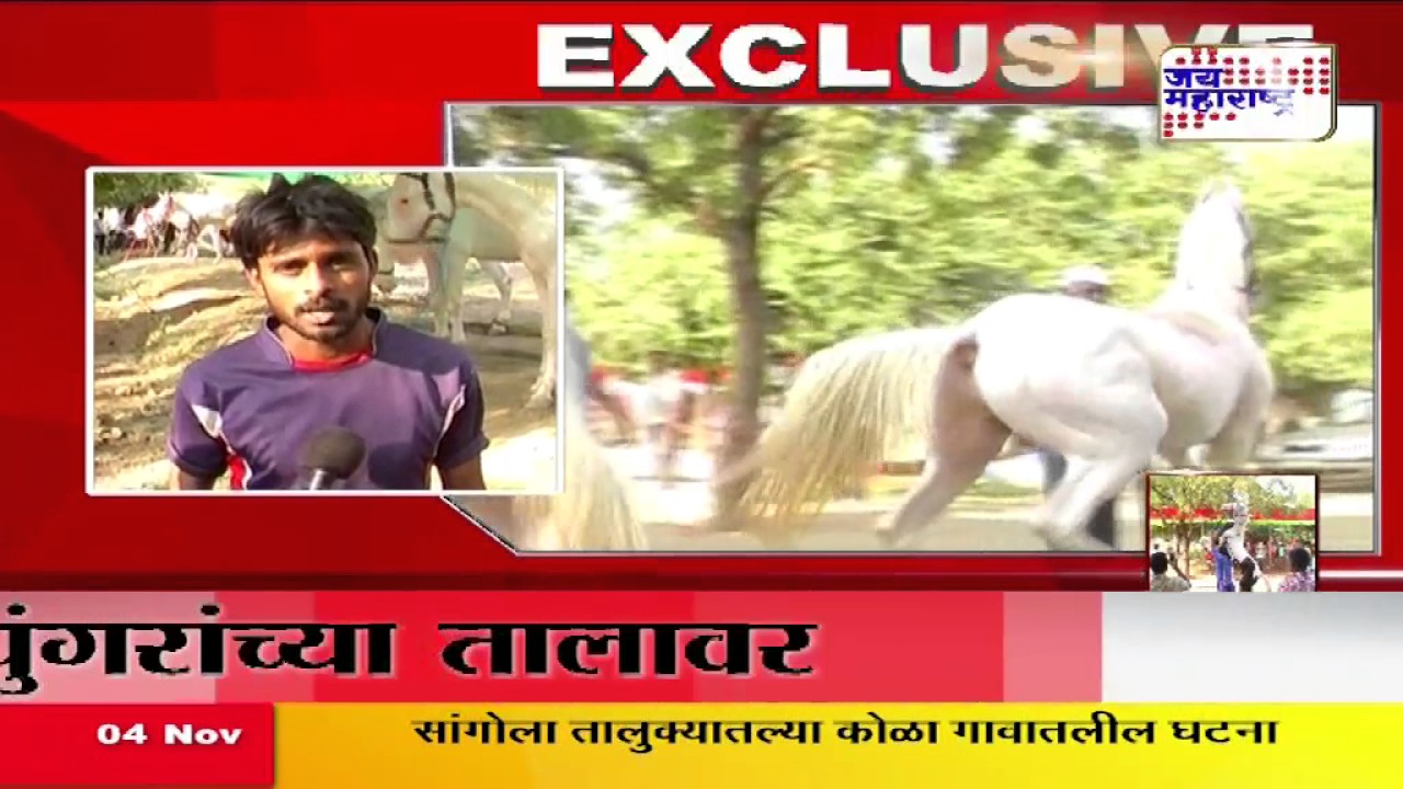 Akluj Bazar Horse Dancing