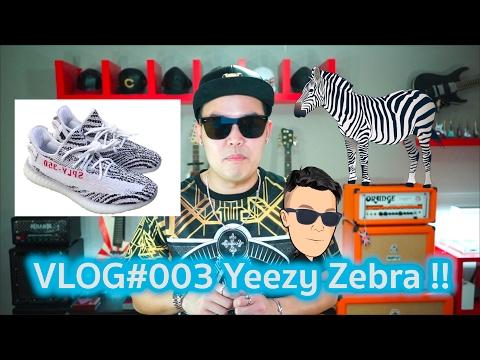 VLOG#003 Zebra Boost เจ้ารองเท้าตัวป่วน - A Day With Goody