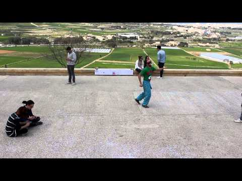 Harlem Shake Malta Art and Design