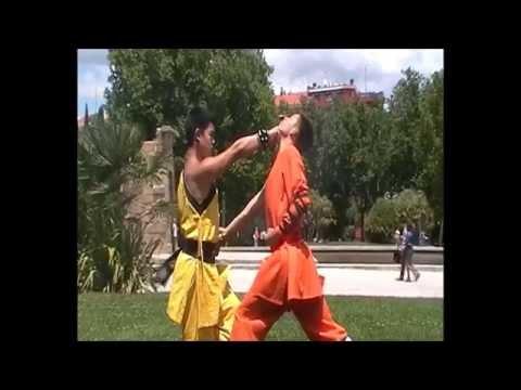 18 Pasos Shaolin