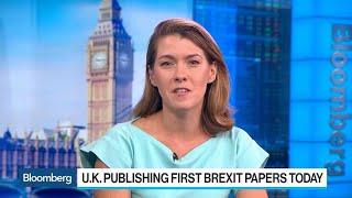 U.K. to Seek Interim EU Customs Union in Brexit