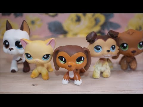 LPS: If LPS Popular Characters Had Theme Songs