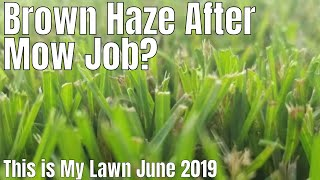 DIY How to fix brown grass.  My grass looks brown after I mow.  brown haze after I mow