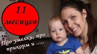 видео Как развивать ребенка в 11 месяцев: игры, занятия, игрушки