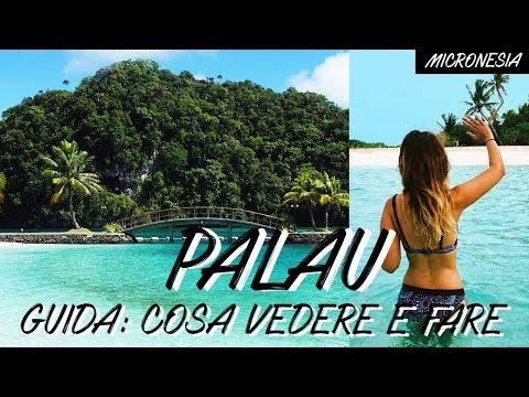 Palau: cosa vedere e cosa fare, i miei consigli di viaggio - Micronesia, oceania