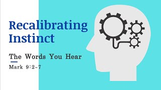 Recalibrating Instincts: The Words You Hear