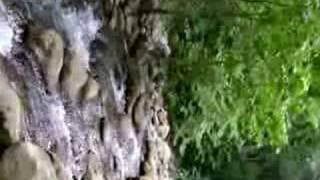 arroyo en pisaflores