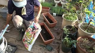 車庫上園芸181020農ビ張り替え・種まき