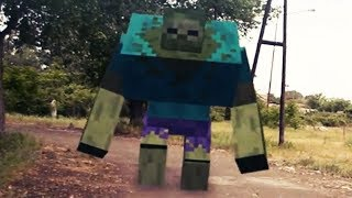 Realistic Minecraft In Real Life  Irl Animation  Minecraft In Real Life  Real Life In Minecraft