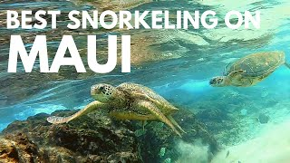 Black Rock Maui Snorkeling Tips | Kaanapali Beach for a Day of Great Snorkeling (turtles included)