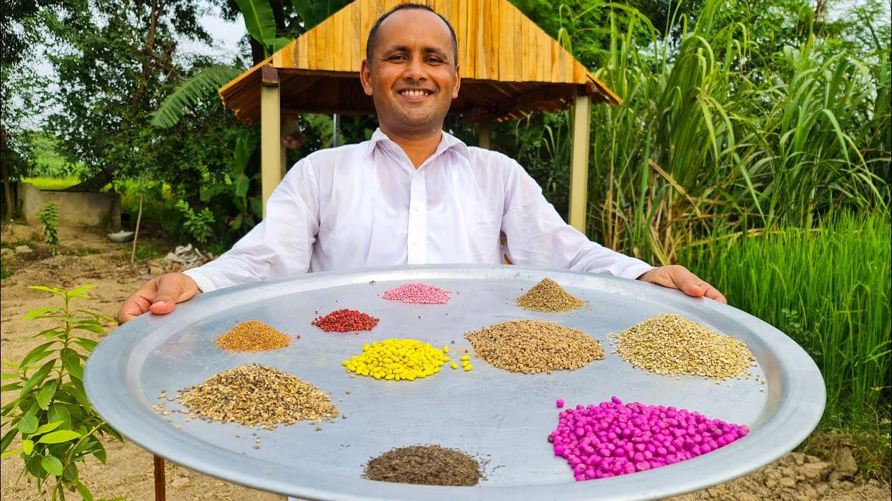 Winter Vegetables Gardening | Organic Vegetable Farming | Sabziyon ki Kasht | Mubashir Saddique