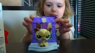 видео Игрушки Littlest Pet Shop (Литл Пет Шоп) Hasbro